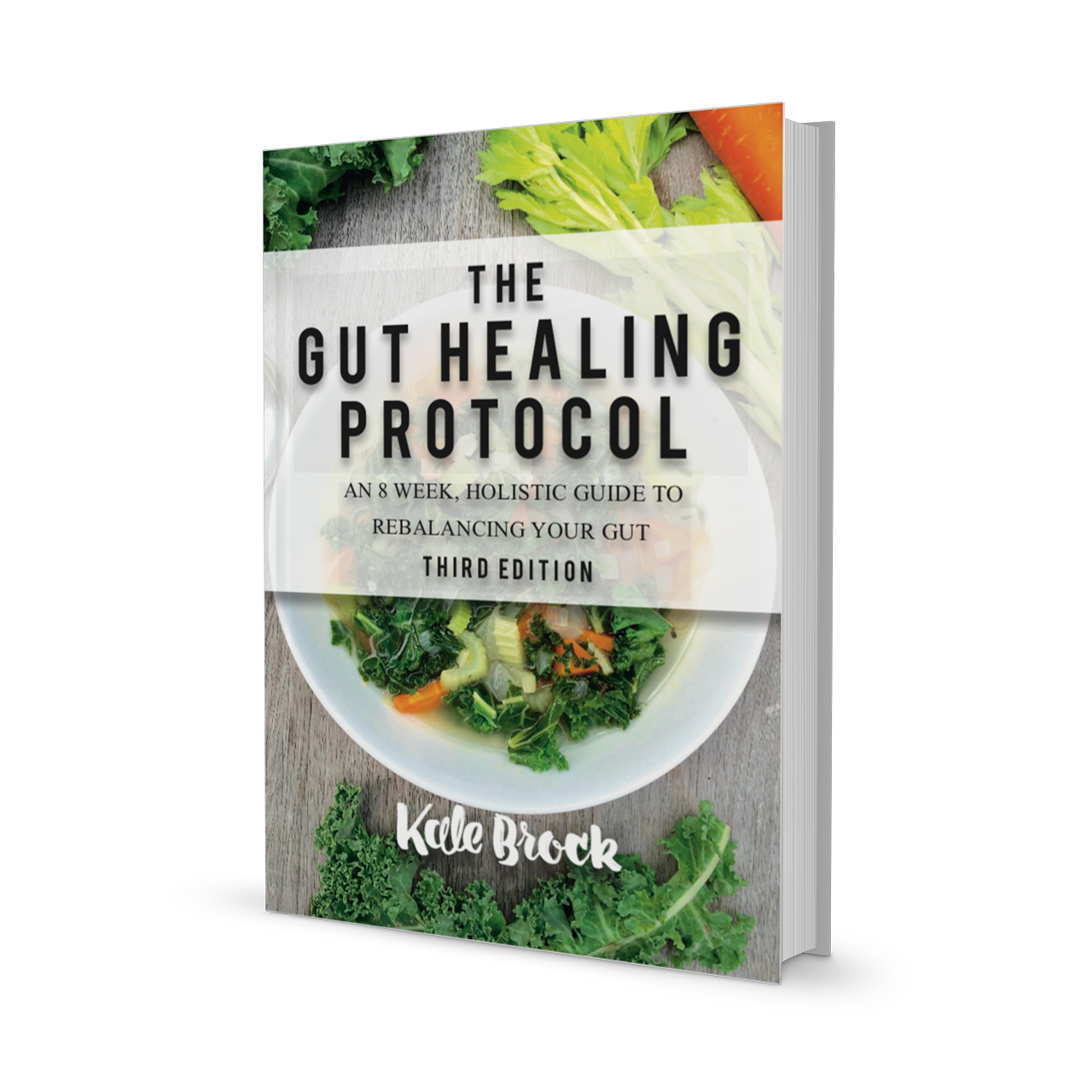 Gut Healing Protocol Book by Kale Brock